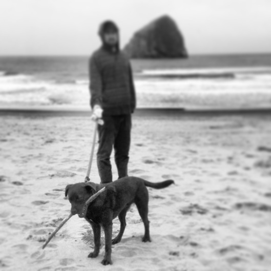 Pacific City Beach, plus a very happy dog with a giant stick.