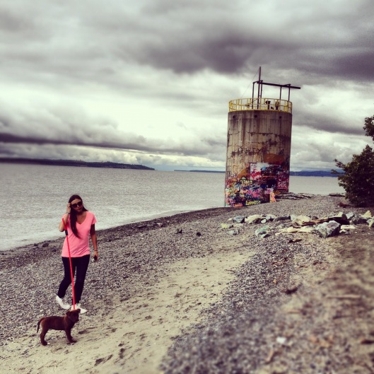 Alaskan Dog Walk