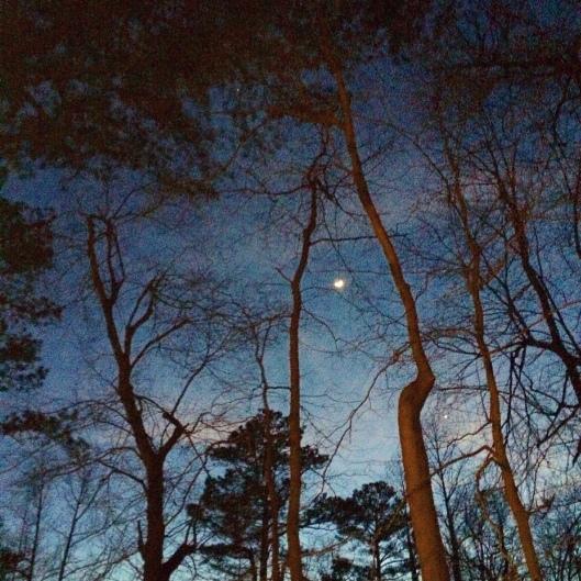 Evening in Mentone